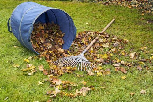 Грабли – незаменимый инструмент садовода-огородника